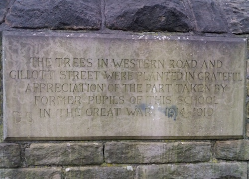 The trees in Western Road and Gilliott Street were planted in grateful appreciation of the part taken by former pupils in this school in the Great Way, 1914-1919.