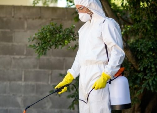 Person spraying herbicides