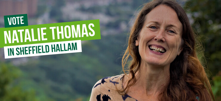 Vote Vote Natalie Thomas in Sheffield Hallam on 12th December in