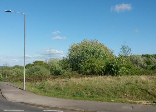 Owlthorpe Fields
