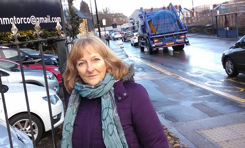 Christine Gilligan Kubo next to traffic at Malin Bridge